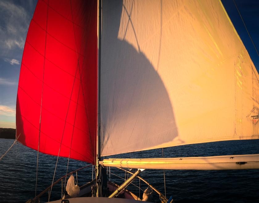 sailing Nov iphone-4
