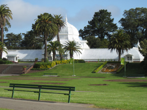 We were hit at the intersection here, in front of the Conservatory of Flowers.