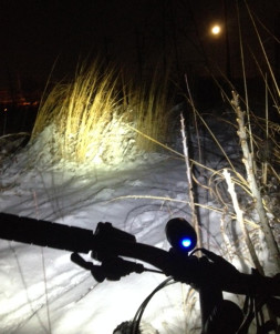 fat bike on trail