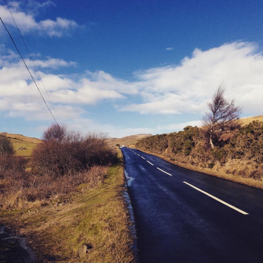 that road in detail - sweet